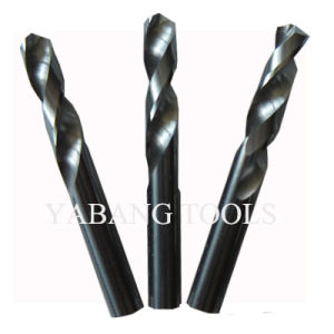 Carbide Drills (HRC35/45/52) pictures & photos