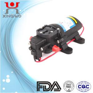 DC Electric Mini Diaphragm Pump 2.5L/Min 60psi (DP001B1)