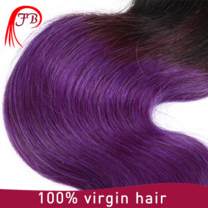 22 Inches Ombre Multi Color 1b Purple Shunfa Express Hair Pieces, 100% Virgin Hair Dyeing and Hair Straightener All Available Hair Weave pictures & photos