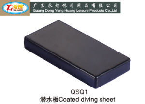 Customized 2kg 4kg Coated Diving Sheet with Hole, Diving Lead pictures & photos