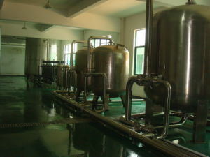 3000bottle/Hour Mineral Water Plant pictures & photos