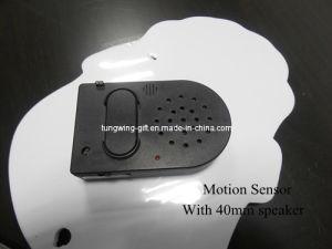 Motion Sensor Recorder pictures & photos