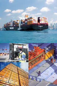 Professional LCL Sea Freight