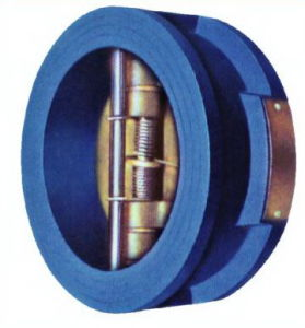 DIN Cast Iron Dual Wafer Check Valve pictures & photos