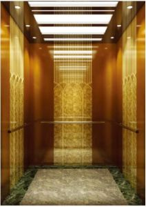 German Professional Passenger Elevator with Vvvf Drive (RLS-256) pictures & photos