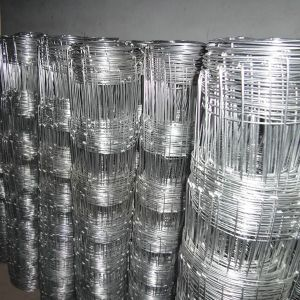 Hot-Dipped Galvanized Farm Deer Fence pictures & photos