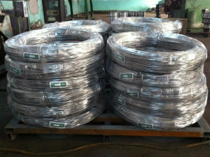 Pure 99.995% Zinc Wire for Metal Protection pictures & photos