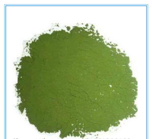 Best Price Fresh Seaweed Flour for Health Care pictures & photos