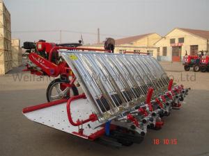 The New Rice Transplanter (2ZT-8238BG) pictures & photos