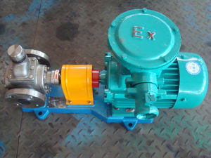 Ycb0.6-0.6 Stainless Steel Arc Gear Oil Pump pictures & photos