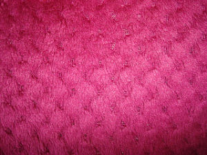 Four Way Stretch Velvet Fabric pictures & photos
