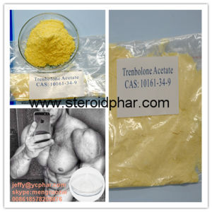 High Purity Steroid Powder Trenbolone Hexahydrobenzyl Carbonate Parabolan for Muscle Gain