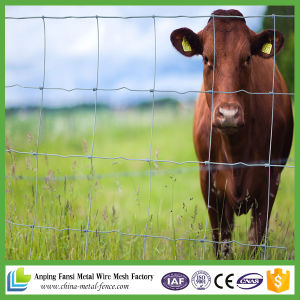 Field Fence / Cattle Farm Fence / Grassland Fence pictures & photos
