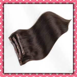 Chinese Remy Hair Clip-on Extensions Silky 18inch Brown Color pictures & photos