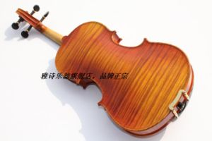 Advanced Varnished Violin (YSV017)