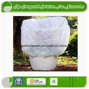 Landscape Nonwoven Fabric with UV Treated pictures & photos