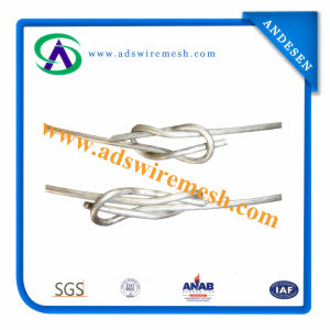 Galvanized Loop Tie Wire/Binding Wire/ Bailing Wire (best quality & factory price) pictures & photos