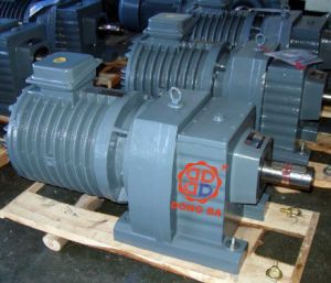Dr Series Reducer with Roller Motor