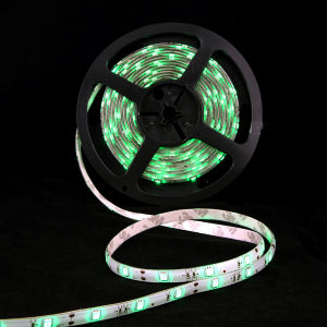 Fashion Show LED String Light Colorful pictures & photos