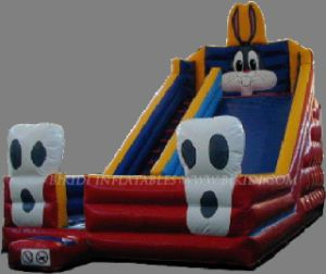 Inflatable Slide (B4049) pictures & photos