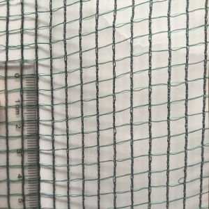 HDPE Anti-Hail Netting for Protecting Plants and Fruits pictures & photos
