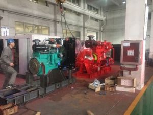 Diesel Fire Fighting Pump with CE Certificates pictures & photos
