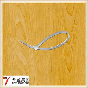 Nylon 66 PA Plastic Self-Locking Cable Tie pictures & photos