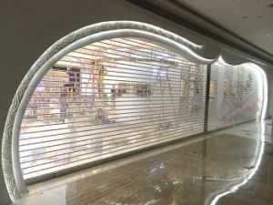 Poly Transparent Roller Shutter Door (BH-SD28) pictures & photos