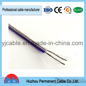 Audio Speaker Wire Colored Fancy Speaker Cable pictures & photos