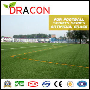 Hot Sale Artificial Football Grass Lawn (G-5001) pictures & photos