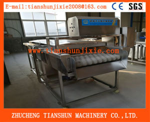 Fruit and Vegetable Washer /Fruit & Vegetable Washing Machine Ts-4500 pictures & photos