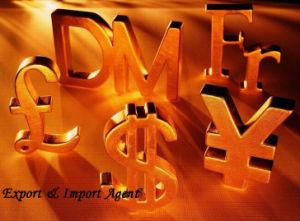 Export & Import Agent