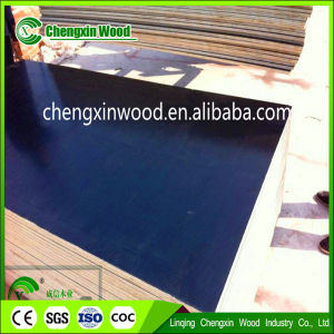 Hardwood Core Plywood with Best Price From Linqng Chengxin pictures & photos