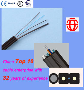 2 Core FTTH Self-Supporting Optical Fiber Drop Cable pictures & photos