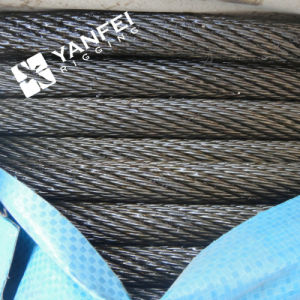 Galvanized Steel Wire Rope for Lifting pictures & photos