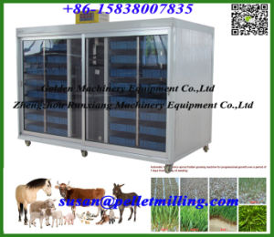 China Automatic Animal Feed Barley Grass Growing Planting Machine (WSYJ) pictures & photos