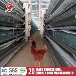 Chicken Automatic Galvanized Battery Chicken Cages Laying Hen/Layer/Egg Chicken pictures & photos