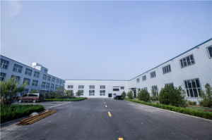 High Performance Brake Pad for Bpm China Supplier pictures & photos