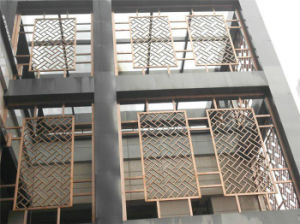 Stainless Steel Laser Cut Outdoor Metal Screen Made in China pictures & photos