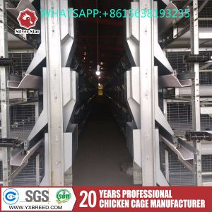 Poultry Farm Equipment H Type Broiler Chicken Shed pictures & photos