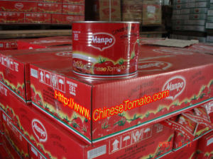 Canned Tomato Paste (MANPO brand) pictures & photos
