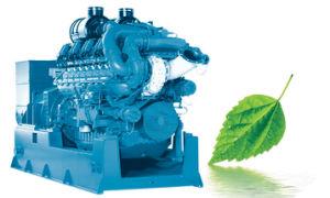 Deutz Series Biomass Gasifier Gas Generating Sets