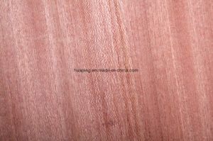 Kenya Market Sapeli Door Skin pictures & photos