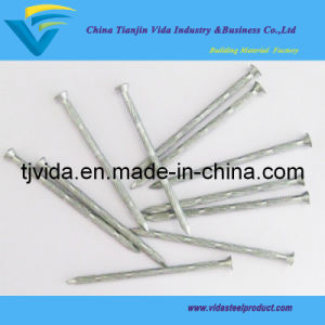 Bamboo Joint Concrete Nails/Concrete Steel Nails pictures & photos