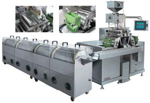 Softgel Encapsulation Line (RJWJ-200B)