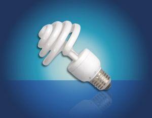 Compact Bulb - Spiral Series (16)