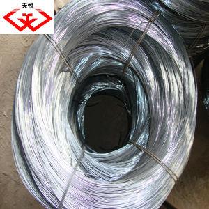 Galvanized Iron Wire (TYD-56) pictures & photos