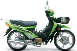 Motorcycle Cub HL110-A