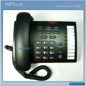 VoIP Phone With 10 Speed Dial Keys (IP621)