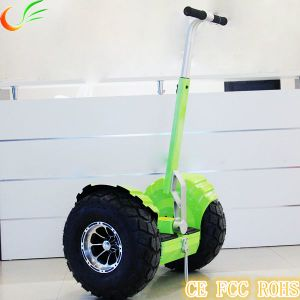 Self Balance Electric Chariot Green Transporter pictures & photos
